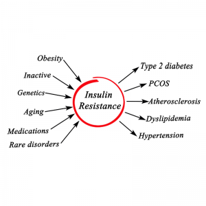 Toronto Holistic Nutritionist Laurie McPhail Insulin Resistance