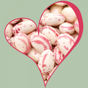 Toronto Holistic Nutritionist Laurie McPhail Beans Beans They Are Good For Your Heart