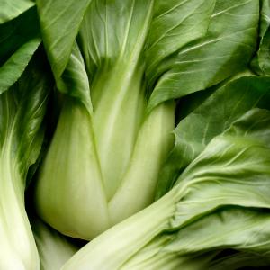 Toronto Holistic Nutritionist Laurie McPhail Make Calories Count Menu